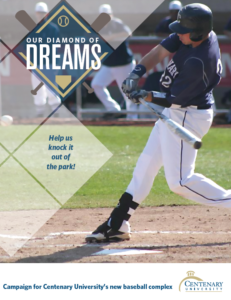 DOWNLOAD OUR DIAMOND OF DREAMS PORTFOLIO